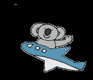 koala_飛行機